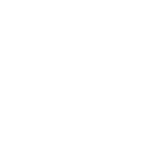 Hupp Toyota Lift LinkedIn Icon